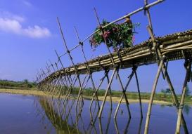 23_bamboo_bridge